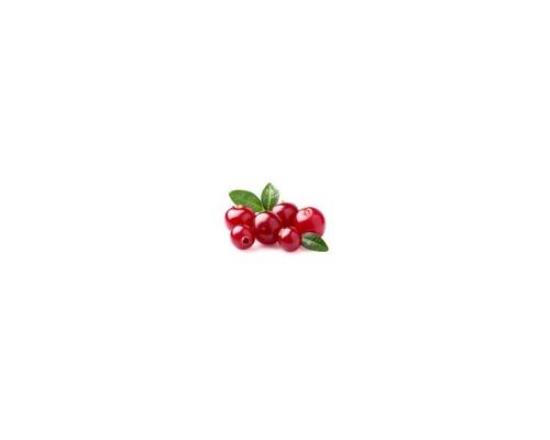 Cranberry – Κράνμπερι
