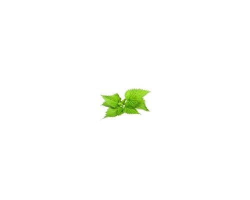 Nettle Leaf – Φύλλα τσουκνίδας