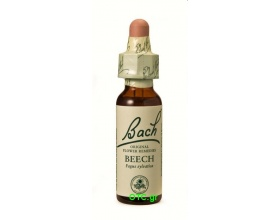BEECH Bach Flower Remedies