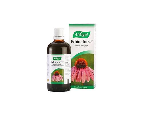 Echinaforce Βάμμα από φρέσκια Echinacea purpurea (εχινάκια)