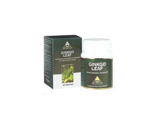 Ginkgo Leaf - για τη βελτίωση της μνήμης