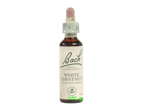 WHITE CHESTNUT Bach Flower Remedies