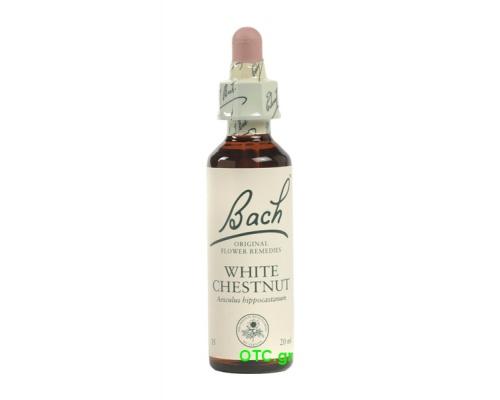 WHITE CHESTNUT Bach Flower Remedies