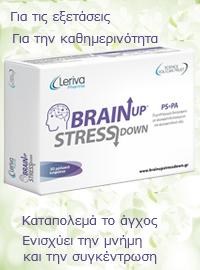 Sec2 Brainup